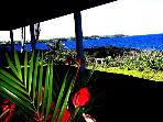 Oceanfront 3 Bedroom Alohahouse on the Puna Coast!