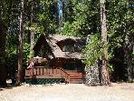 Gorgeous cabin- fireplace, near downtown &amp; lake, deck, A/C &amp;  firepit