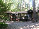 Charming &quot;Twain Harte Original&quot; cabin- deck, kitchen, BBQ, handicap access