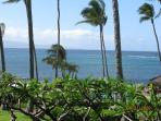 Napili Shores H263 Ocean View Summer  Available