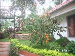 2 bedroom 2 bathroom  cottage in Munnar,  India