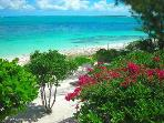 Grace Bay Beach & Ocean Villas start at $99  nite!