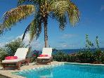 5 BR Ocean View Villa, New Pool, Steps to Beach