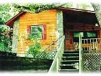 Homey Cabin on a Trout Stocked Creek. Sleeps 4.
