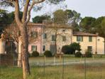 Apartments in charming country house at  Dozza
