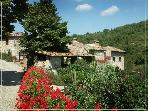 "Authentic 4BR farmhouse ""Casa Pineta"" -  Chianti"