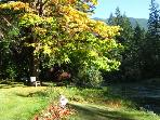 Cowichan Riverside Cottage