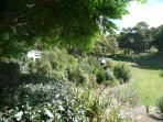 Ribbonwood Cottages: High in Havelock North hills