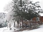 2 Cozy Cabins: Fireplaces, Sauna, near Mt. High!
