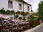 Vacation Apartment in Bamberg - 323 sqft,  cozy, tasteful (# 3381) #3381