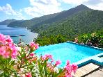 """Tortola Adventure"" Extremely Private 2BR Villa w/ Stunning Ocean Views & Infinity Pool"