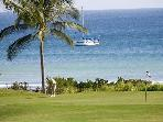 Punta Mita 4 Seasons, Whitewater ocean views, golf