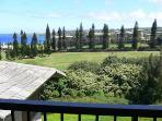 Kapalua Resort - 1 Bedroom / 2 Baths - Ridge Villa