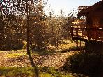 Yosemite Tree House - Solitude and Beauty~hot tub
