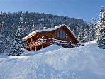 Ski-in/out Log Home - 5BR/3BA, Sleeps 14