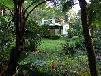 Rainforest Home at El Yunque Puerto Rico - private