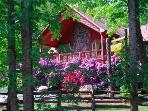 Vacation Log Home near Boone, North Carolina