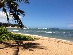 Haleiwa's Hidden Treasure