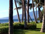 2 bedroom 2 bath spacious condo in Kaanapali Maui