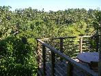 Private and relaxing 3 bedrooms villa in Ubud