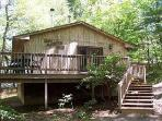 Pet Friendly 2BR Cabin in Blue Ridge Mtns of VA