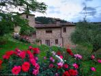 Agriturismo Ardene