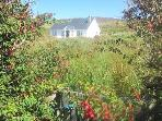 Inishbofin Island Cottage