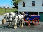 THE CARRIAGE HOUSE - KERIKERI
