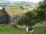 Cottage in Pennine Yorkshire