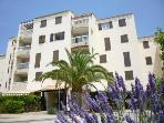 Apartment - Saint Cyprien 1 of 5