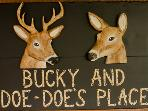 Bucky And Doe Doe's Place