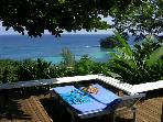 Halcyon, Port Antonio