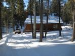 Cabin in the Woods-Only $350 starting on March 14