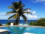 Panoramic Ocean View, Heated Salt Water Pool