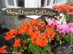 Hawthorn Cottage 2