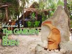 Garden of Eden Home in Downtown Playa