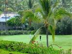 Best Kona Vacation - Golf, Scuba , Kayak,  Fishing