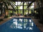 Blue Lagoon B&B has heated pool in tropical atrium