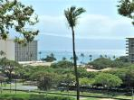 Kaanapali Royal #N302 GV