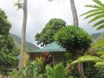Iao Valley Private Cottage; Centrally Located!