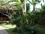 Two Bed Room Pool Villa Rental near Ubud Center