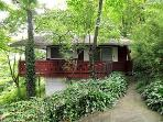 Pet-Friendly chalet 3 min. to downtown Asheville