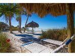 Sea Shell Condos Directly on Siesta Key Beach