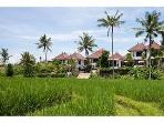 3 bedroom villa in Canggu Terrace