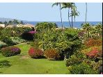 Ekahi 44C Private Remodeled Oceanview Townhouse
