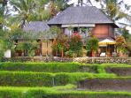 Beautiful villa in the lush rice fields of Ubud