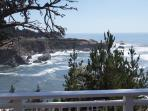 5 Whales, 2 acre oceanfront vacation home
