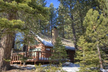Wonderful Tahoe cabin: 10min to ski, swim & casinos - COH0861 - Image 1 - South Lake Tahoe - rentals