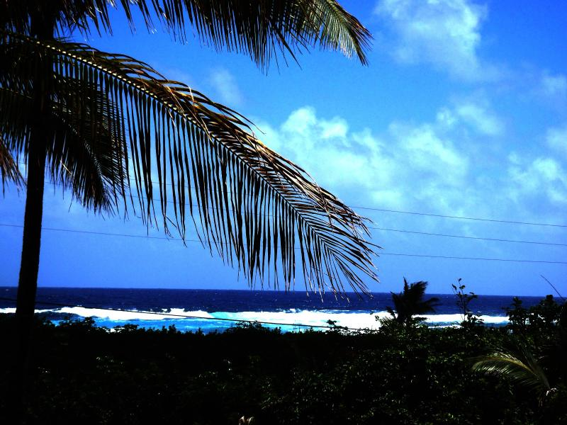 Beautiful view from the Pualani Vacation rental in Kapoho, Hawaii