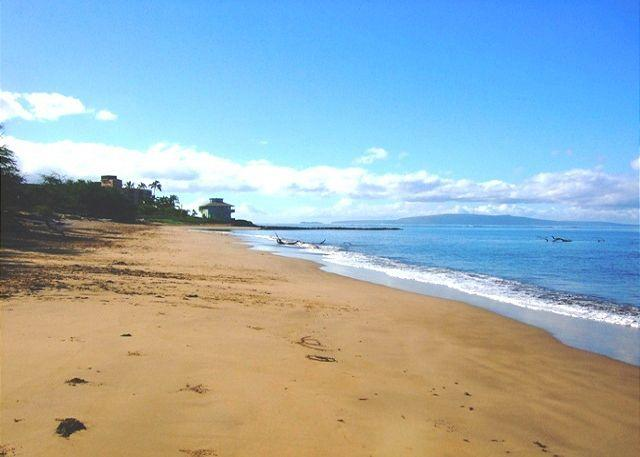 Kalepolepo Beach Across the Street from Kihei Bay Surf